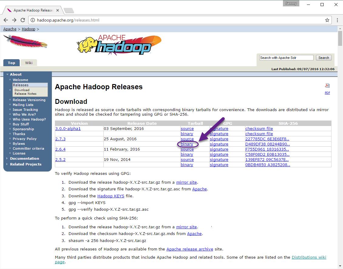Wersje Apache Hadoop